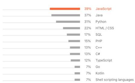 lenguaje de programación primario